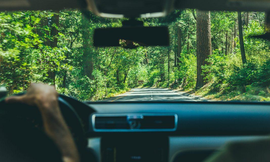 Imagen desde el interior de un coche hacia la carretera que tiene por delante, un tramo boscoso.